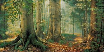 Sacred Grove, by Greg K. Olsen. Image via Church of Jesus Christ.
